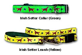Irish Setter Collar and Leash